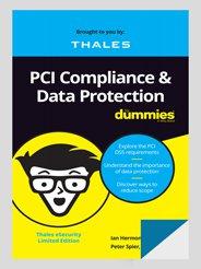 PCI DSS 合規:可用於資料保護的加密方式